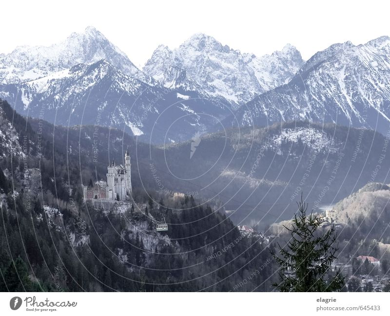 Schloss Neuschwanstein in den Alpen Ferien & Urlaub & Reisen Tourismus Sightseeing Winter Berge u. Gebirge Natur Landschaft Felsen Allgäuer Alpen Bundesadler