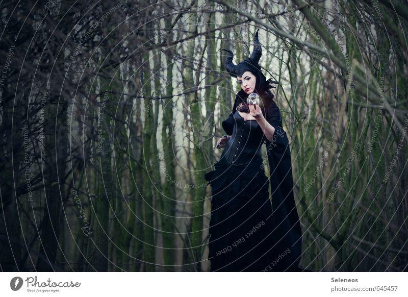 Maleficent Mensch Frau Natur Wald Erwachsene Umwelt feminin Karneval Horn Märchen Subkultur Hexe Märchenwald Wahrsagerei Mythologie