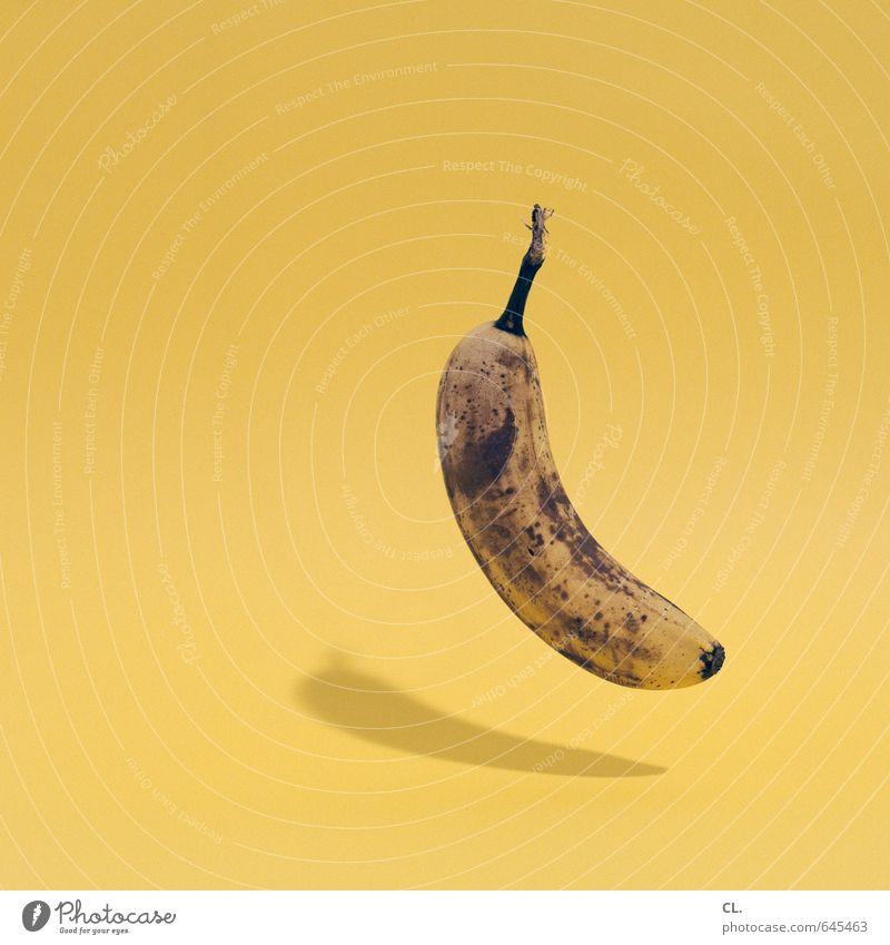 leichte kost gelb lustig Gesundheit Essen außergewöhnlich Lebensmittel fliegen Frucht ästhetisch Fröhlichkeit Ernährung Kreativität Idee lecker Bioprodukte Frühstück