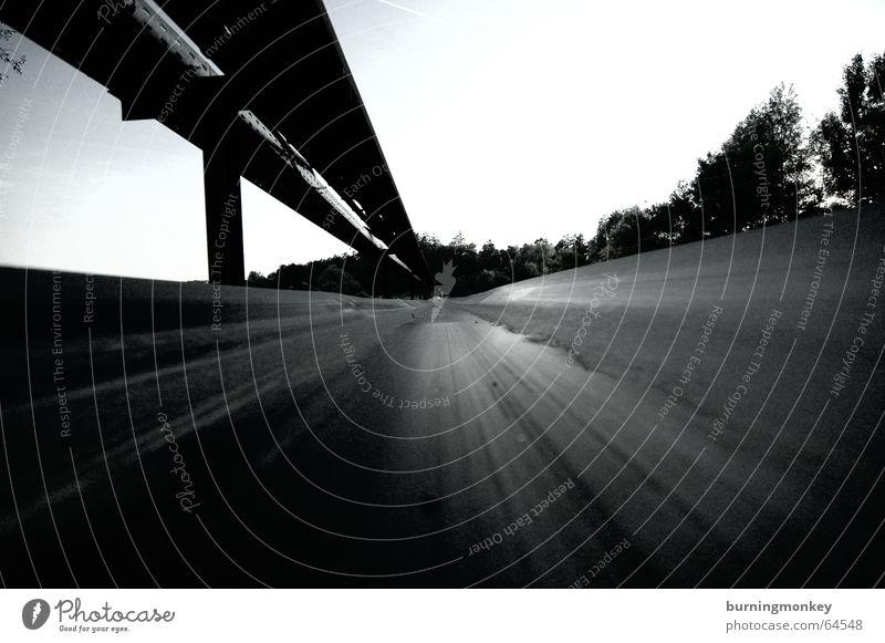 Auf dem Band Wald Bewegung Geschwindigkeit Perspektive Schnur Förderband