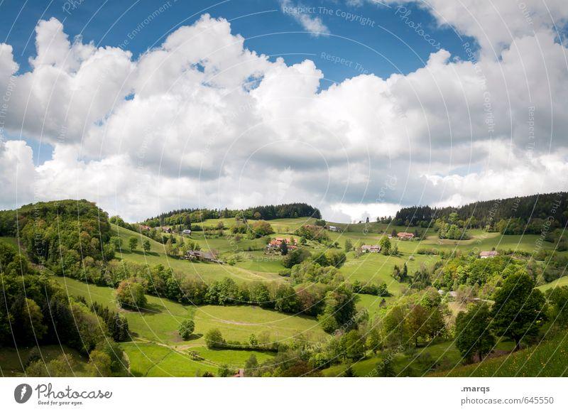 Mittelgebirge Tourismus Ausflug Sommer Umwelt Natur Landschaft Himmel Wolken Schönes Wetter Pflanze Baum Wiese Wald Hügel Berge u. Gebirge Erholung wandern