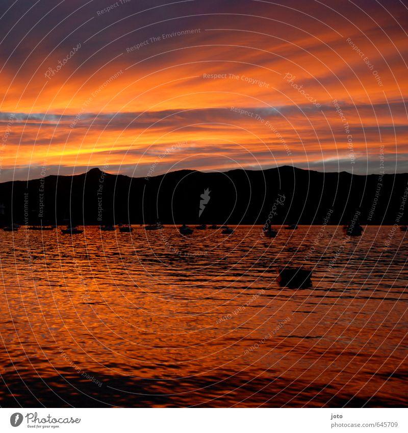 Akaroa Himmel Ferien & Urlaub & Reisen Meer Erholung Landschaft ruhig Wolken Ferne Berge u. Gebirge Wärme Küste Wasserfahrzeug orange Idylle Ausflug Aussicht