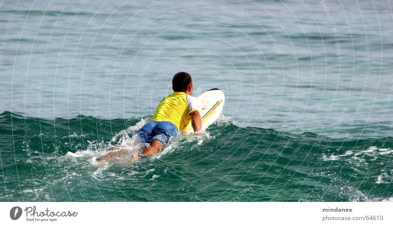 surfer beim rauspaddeln Wasser Meer grün gelb Wellen Surfen Surfer