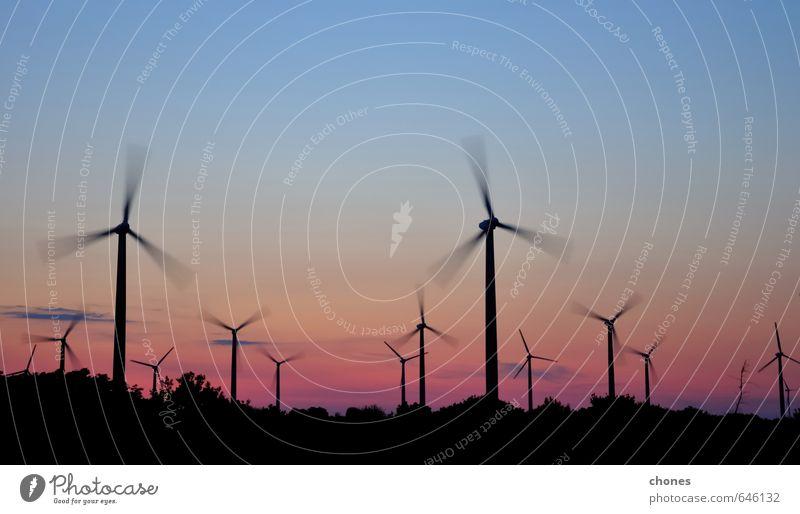 Windturbinenpark mit Lichtstrahlen bei Sonnenuntergang Technik & Technologie Menschengruppe Umwelt Landschaft Pflanze Himmel modern Sauberkeit Energie