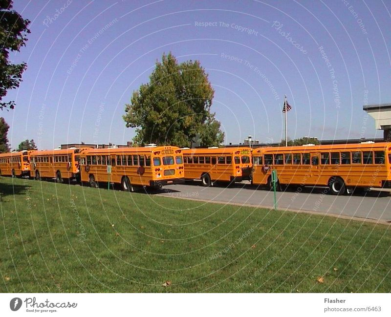 Schulbusse Amerika Bus