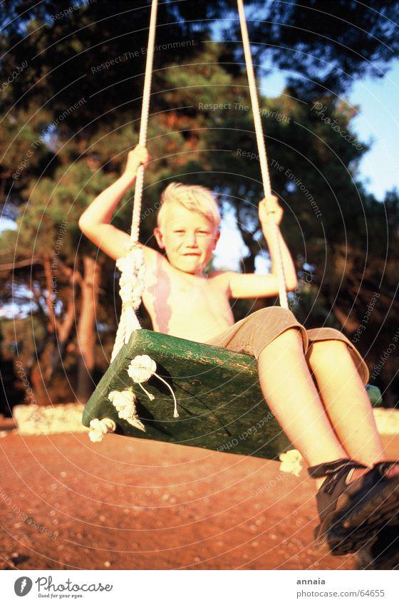 Endorphine Schaukel Kind Sommer frisch Baum Ferien & Urlaub & Reisen Holzbrett Spielen Lebensfreude live Abendsonne endorphine Freude Junge boy Wind Haut Sonne