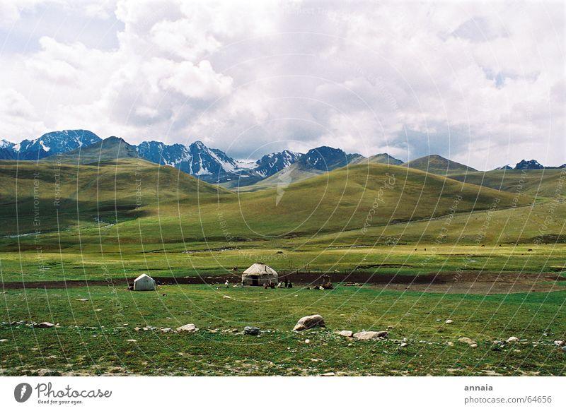 Nomaden Asien Himmel Wolken Steppe Schaf Mongolei Luft einfach Gelassenheit Wiese jurte Landschaft Berge u. Gebirge hills sky Leben Ferne Freiheit Klarheit