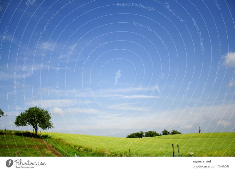 Windows XP mit Baum Himmel Baum grün Sommer Wolken Wiese Frühling Wege & Pfade Landschaft braun Feld Hügel Amerika Zaun