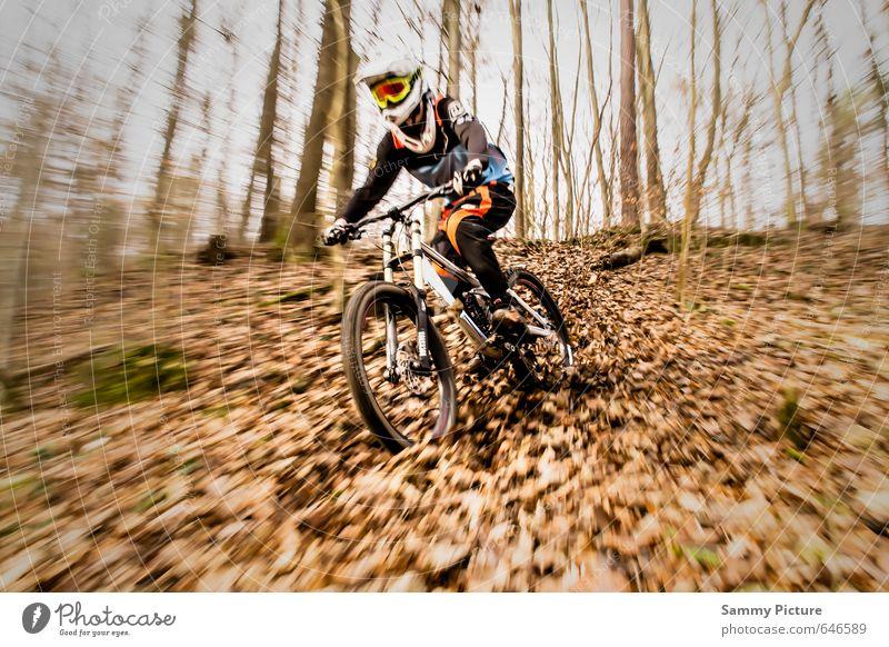 Downhill Sport Fahrradfahren Mensch maskulin Junger Mann Jugendliche 1 sportlich Lebensfreude Coolness Freude Mountainbike Herbstbeginn Farbfoto Außenaufnahme