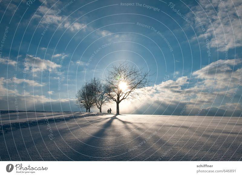 Tschüss Winter Mensch Paar Partner 2 Umwelt Natur Landschaft Himmel Wolken Sonne Klima Schönes Wetter Eis Frost Schnee Pflanze Baum Hügel kalt Gefühle