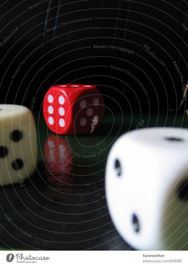kniffellig Spielen Glücksspiel verlieren 3 6 5 2 rot weiß schwarz Reflexion & Spiegelung dunkel Freude Würfel
