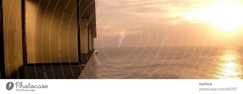 Salvador Gezwitscher Salvador de Bahia Sonnenuntergang Sonnenaufgang Meer Atlantik ruhig Ferien & Urlaub & Reisen Vogel Licht Küste Morgen Panorama (Aussicht)