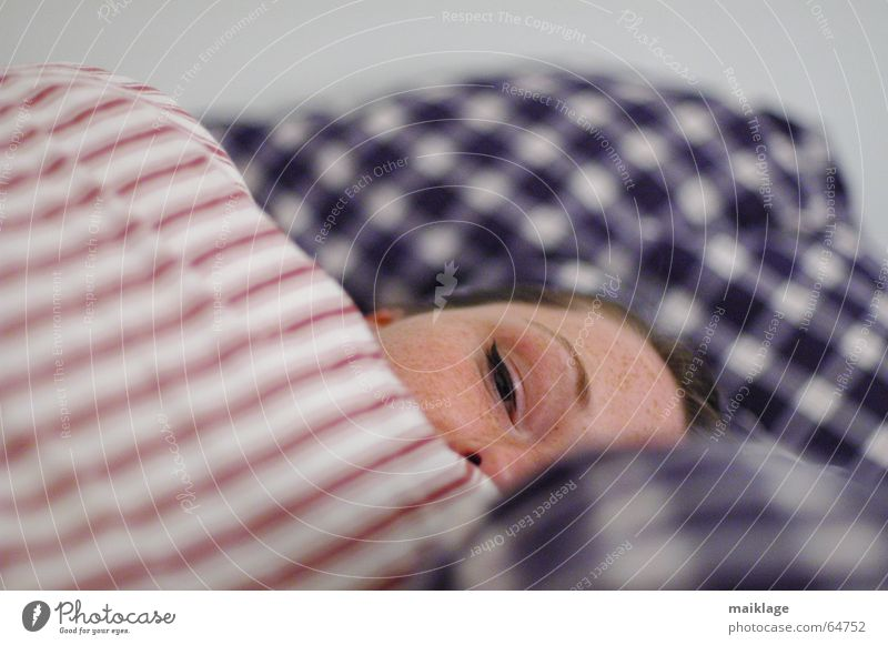 doch müde Frau Junge Frau Bett schlafen Nacht Kissen Streifen kariert Gesicht Müdigkeit Kopfkissen