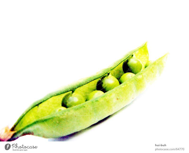 Mrs.Erbse. weiß grün Ernährung Luft hell braun Erde süß Gemüse Sträucher Kugel Stengel lecker Wurzel Hülsenfrüchte Erbsen