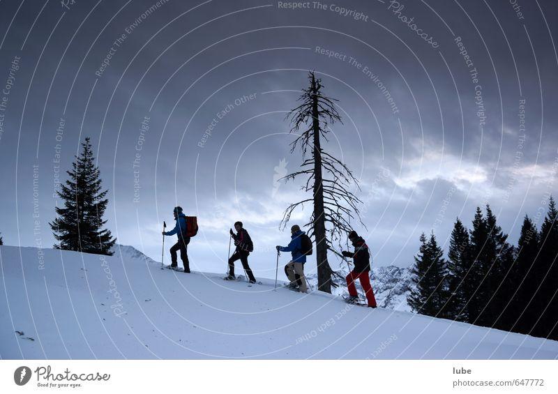 Abendschneeschuhwanderung Mensch Himmel Natur Landschaft Wolken Winter Berge u. Gebirge Schnee Sport Wege & Pfade Freiheit Wetter Tourismus Klima wandern Fitness