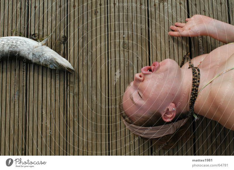 Ein Hauch Berthold Hecht Wasser Sommer Luft See Paar Fisch Erfrischung Hecht