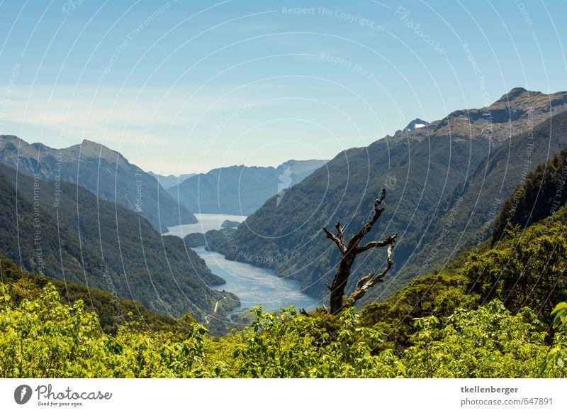 Doubtful Sound Neuseeland IX Umwelt Natur Urelemente Wasser Berge u. Gebirge Fiordland Nationalpark Strand Bucht Fjord Ferien & Urlaub & Reisen Overnight Cruise
