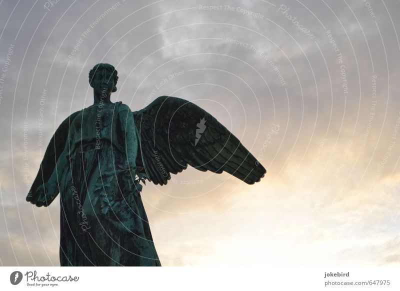 Komm ins Licht Wolken Flügel Kleid Engel friedlich Anmut Kranz