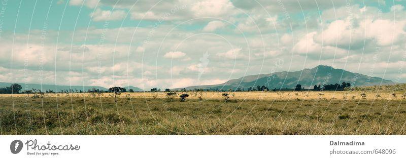 Hells Gate Nationalpark Ferien & Urlaub & Reisen Abenteuer Ferne Safari Fahrradtour wandern Umwelt Natur Landschaft Pflanze Tier Himmel Wolken Frühling Sommer