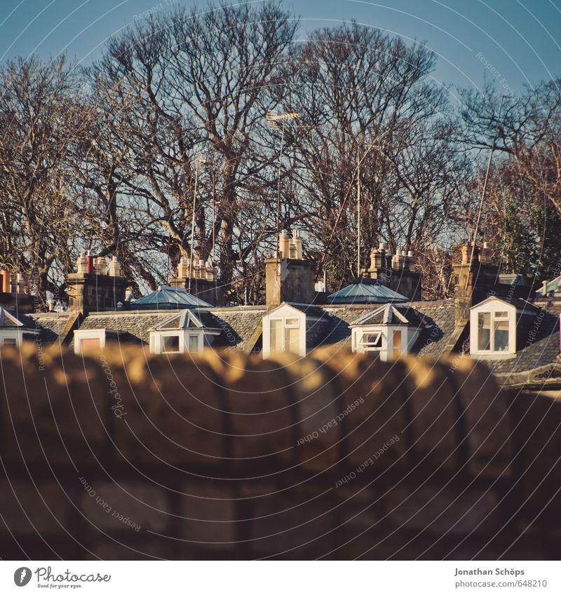 Edinburgh XV Stadt Baum Haus Winter Mauer Autofenster braun Idylle Häusliches Leben Dach Hauptstadt Schornstein kahl Großbritannien Schottland Englisch