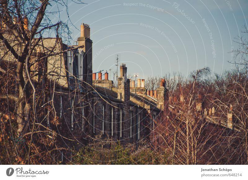 Edinburgh XVI Natur Stadt Baum Haus Winter Architektur Häusliches Leben ästhetisch Dach Bauwerk Schornstein kahl Blauer Himmel Großbritannien Schottland