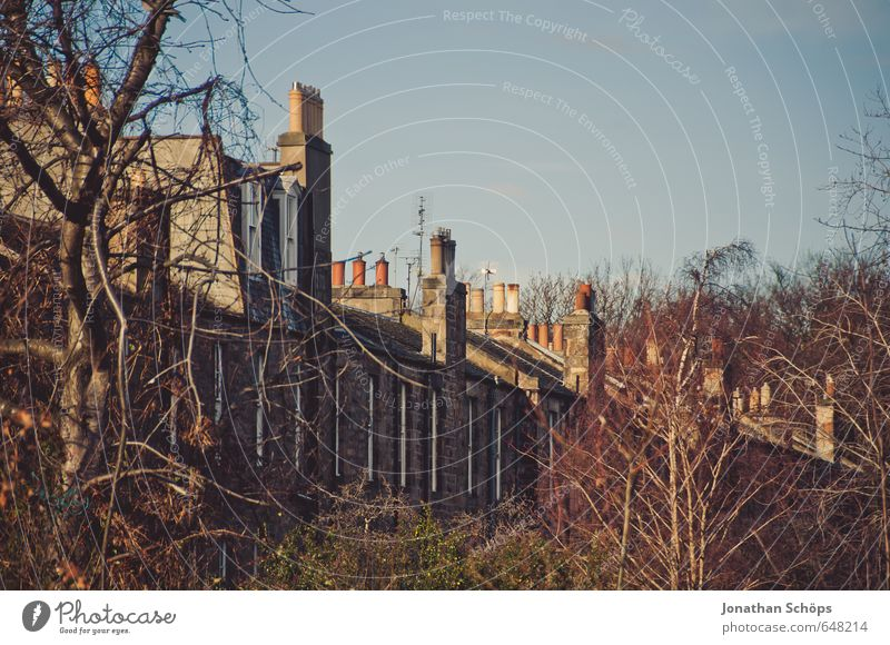 Edinburgh XVI Schottland Großbritannien Englisch Stadt Stadtrand bevölkert Haus ästhetisch Schornstein Dach Häuserzeile Häusliches Leben Baum Natur bewachsen
