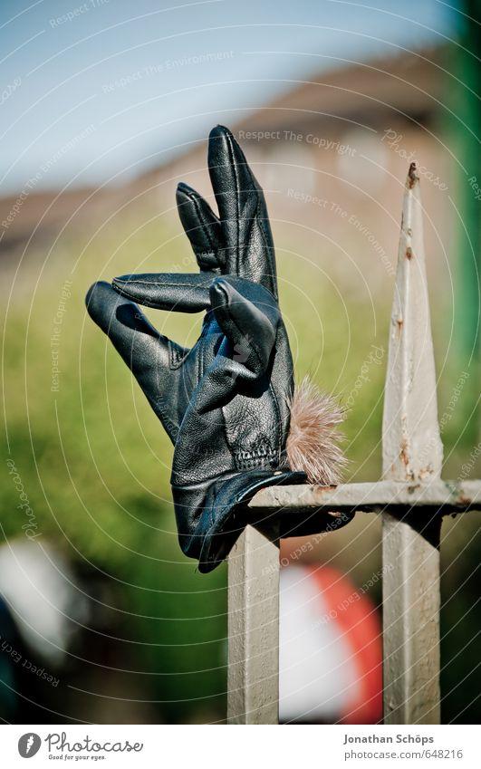 exzellent Lifestyle elegant schwarz Handschuhe Zaunpfahl vergessen Finger zeigen Fundstück Wegrand Edinburgh Schottland gestikulieren spreizen lustig Humor