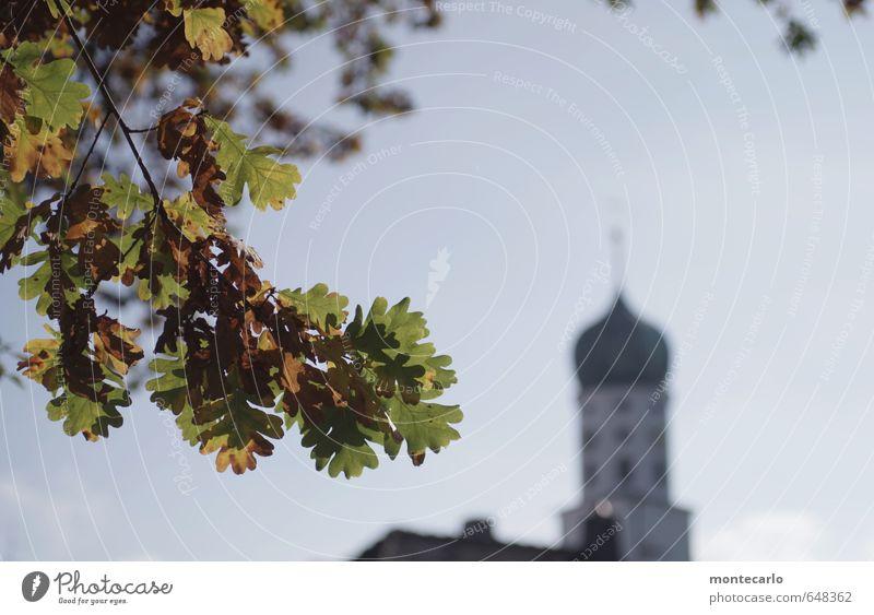St. Oswald-Stockach Himmel Natur blau alt grün Pflanze Blatt Umwelt Wärme Herbst natürlich hell Luft Freizeit & Hobby Idylle authentisch