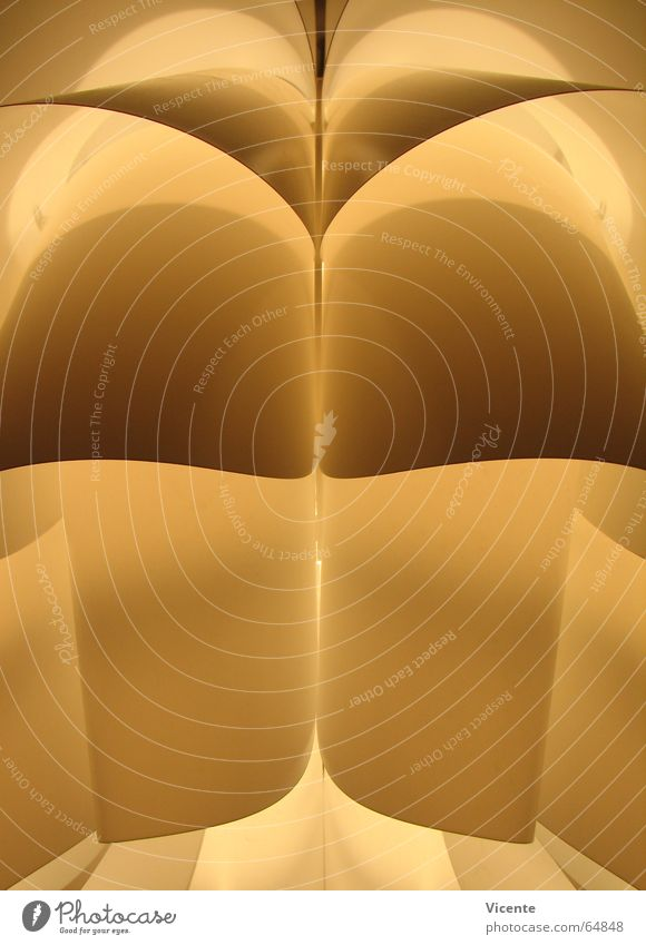 Cynara scolymus gelb Lampe dunkel Wärme hell Beleuchtung Physik Dinge Statue Lichtspiel Symmetrie Bogen Illumination Lamelle Lampenschirm Lebensmittel