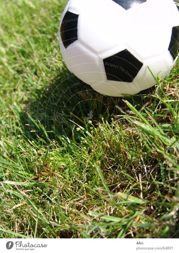 Tooor Gras grün Rasen Schwarzweißfoto Ball Schatten Nahaufnahme Detailaufnahme klein rund Reflexion & Spiegelung Menschenleer Außenaufnahme Farbfoto