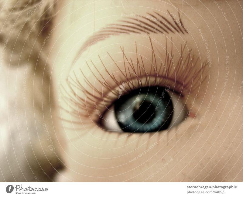wimpern blau Auge träumen Traurigkeit Trauer Puppe Wimpern Augenfarbe Puppenauge