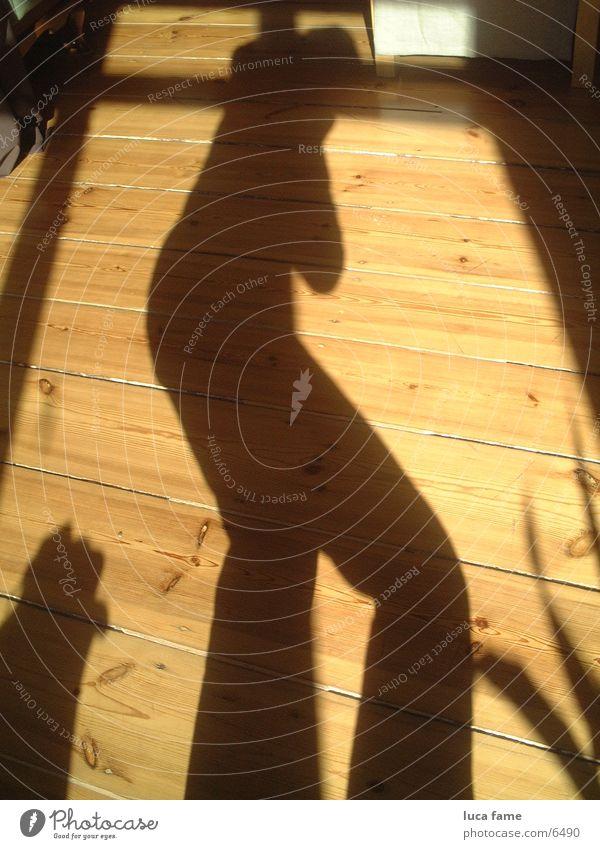schattig Schattenspiel Holzfußboden Sonne Sommer Dinge