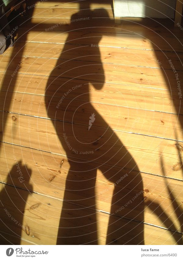 schattig Sonne Sommer Dinge Holzfußboden Schattenspiel