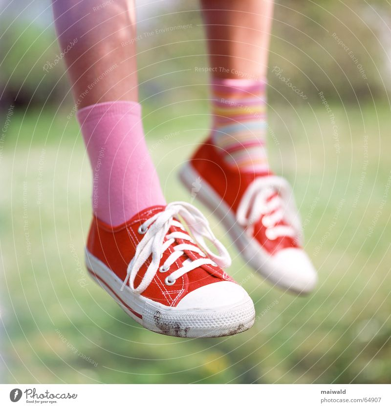 Ich sitze hier auf meinem Baum... Turnschuh Schuhe rot Strümpfe Ringelsocken Verschiedenheit Schuhbänder rosa Wade Wiese Gras Außenaufnahme Tiefenschärfe Kind