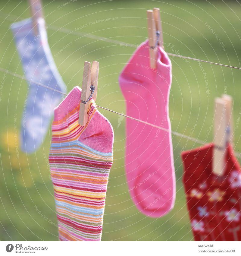 Immer fehlt einer... Wäscheleine Strümpfe Schnur Wäscheklammern Kneifer mehrfarbig rosa rot Blume Blüte Muster gestreift hell-blau grün trocknen nass trocken