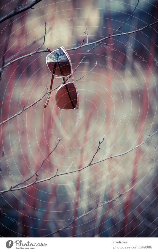 Atempause blau Einsamkeit Erholung rot ruhig Stil Freiheit braun Metall Freizeit & Hobby gold Zufriedenheit Lifestyle Glas Ausflug genießen