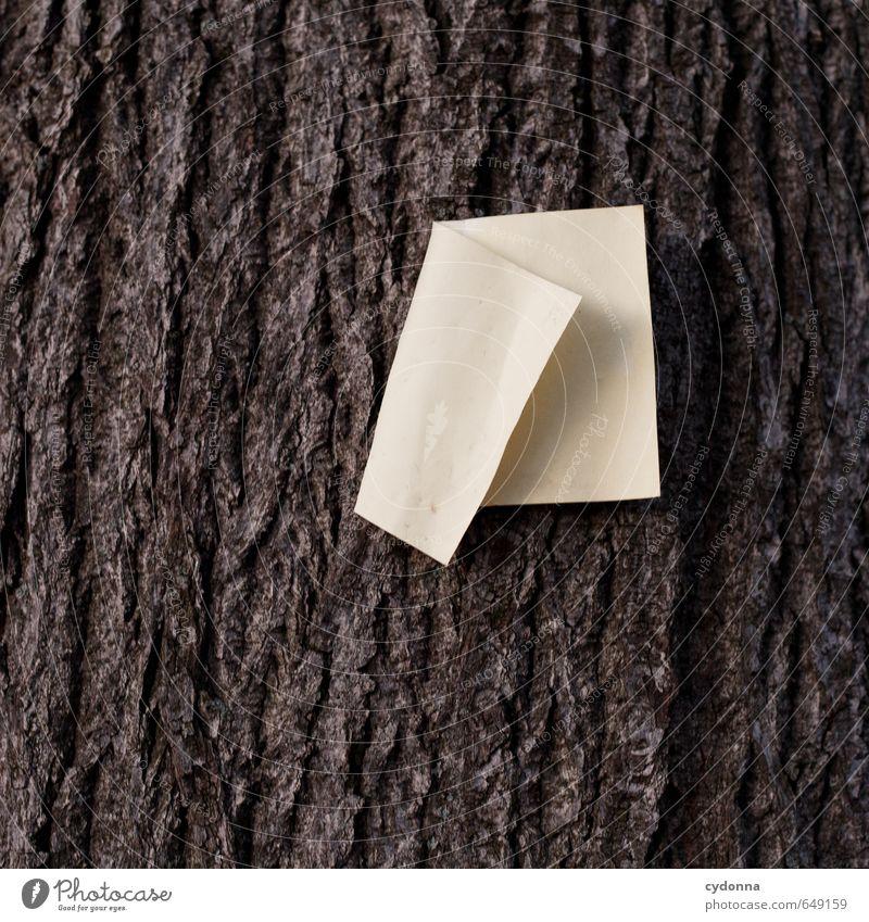 Botschaft, natürlich Bildung lernen Umwelt Natur Baum Schilder & Markierungen Partnerschaft Einsamkeit entdecken Erwartung Freiheit geheimnisvoll Idee