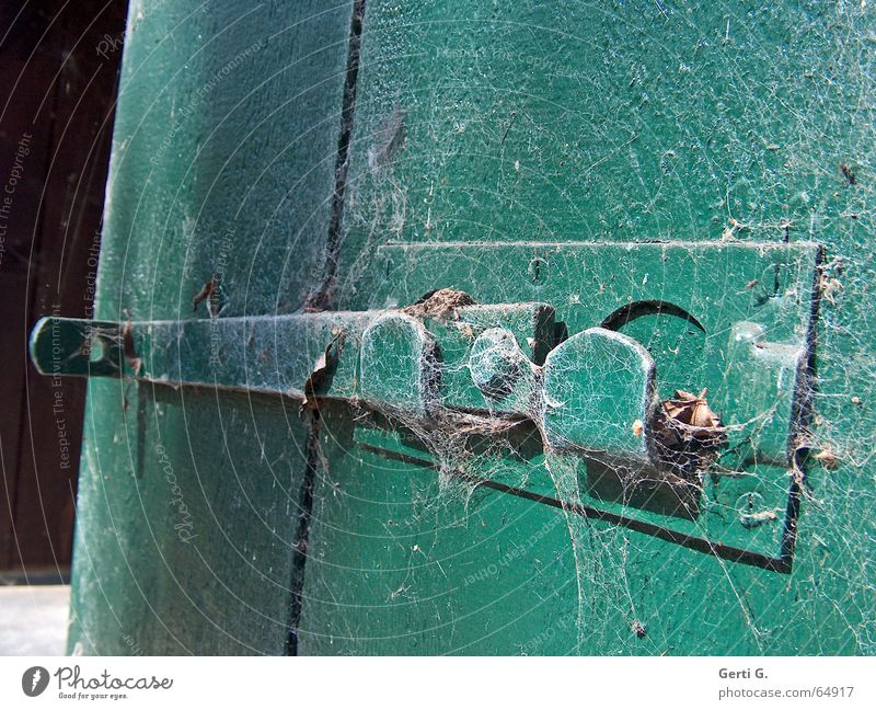 Ausschnitt eines alten Türriegels in flaschengrün mit Spinnweben überzogen schließen geschlossen Riegel Spinnennetz verfallen unberührt Holz Holztür aufmachen