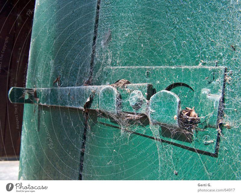 Riegel vorschieben alt grün Holz geschlossen offen verrückt verfallen Burg oder Schloss schließen Spinnennetz aufmachen unberührt Holztür