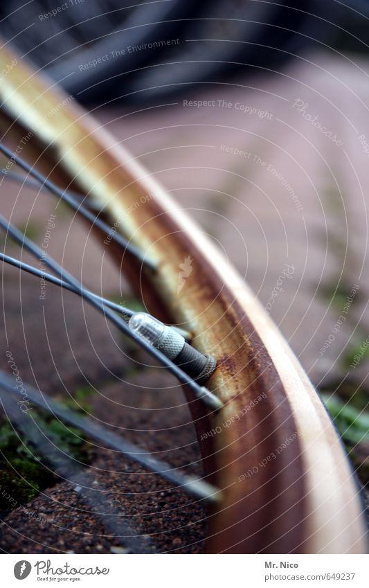 drahtesel Lifestyle Fahrradfahren alt Verfall Rost Ventil Speichen rund Fahrradschlauch trashig Mobilität Felge schrottreif Metall Reifen Fahrradtour Panne