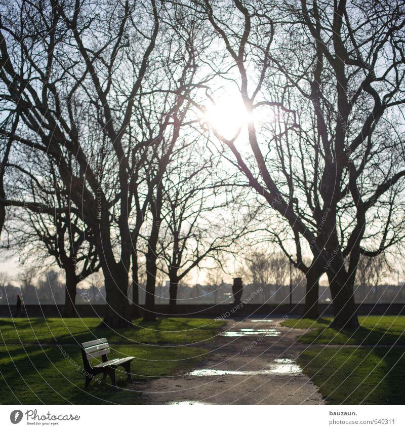see you. Himmel schön Sonne Einsamkeit Erholung Freude Gefühle Wiese Wege & Pfade Frühling Glück natürlich Stimmung träumen Park leuchten