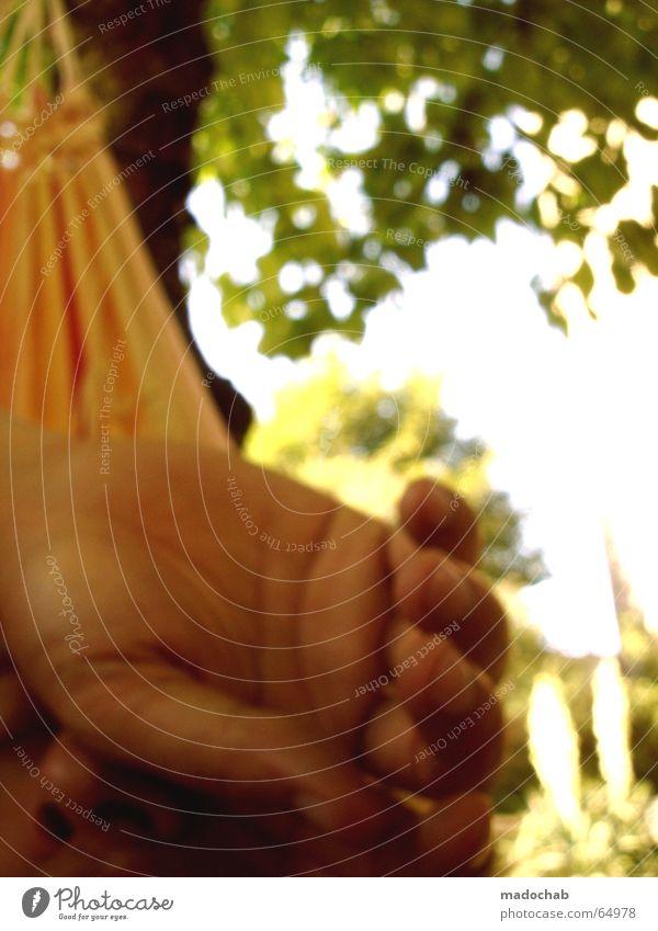 KÖNIG HÄNGEMATTE Ferien & Urlaub & Reisen authentisch müssen kommen Seufzer Mann Junger Mann Erholung Pause Wellness Hand Finger Blatt Hängematte hängen