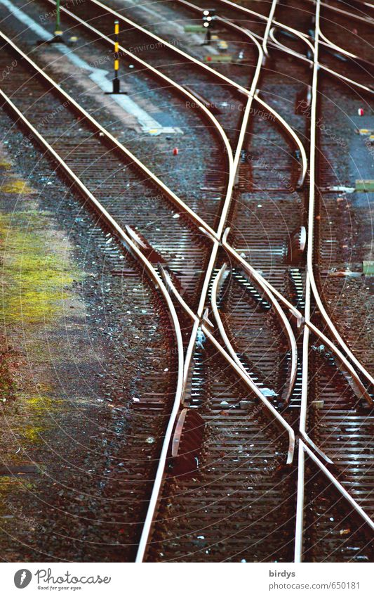 Schienennetz Verkehr Verkehrswege Schienenverkehr Gleise Weiche glänzend Netzwerk Tradition Güterverkehr & Logistik Wege & Pfade Eisenbahn Farbfoto