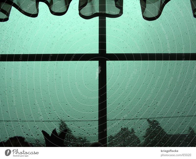 stromausfall Wasser grün blau Pflanze dunkel Fenster grau Regen Stimmung Rücken Gewitter Unwetter Gardine Stromausfall