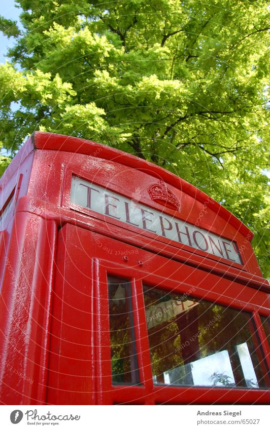 Telephone Telefonzelle rot grün Baum Verständigung England London Kommunizieren