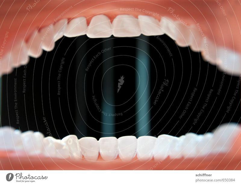 Aus dem Leben eines Zäpfchens Mund Zähne außergewöhnlich Gebiss Zähne zeigen Zähneknirschen Zahnarzt Zahnpflege Gesundheitswesen Rachen Zahnfleisch