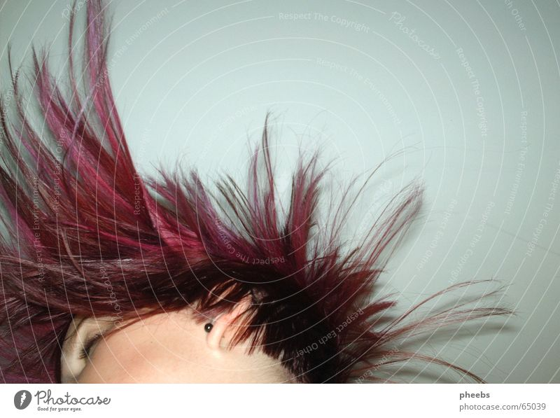 bang your head Gesicht Auge Kopf Haare & Frisuren Bewegung rosa fliegen violett Friseur Schwung kurz Ohrringe Anschnitt Haarsträhne