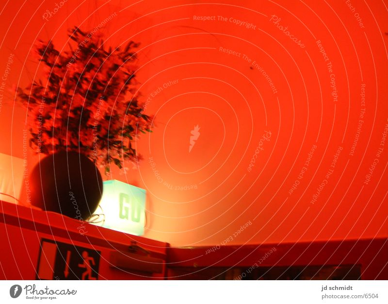 Rotlicht Nacht Notausgang Club Ampel