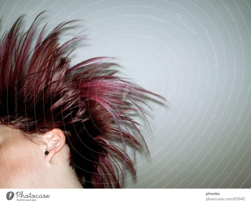 where's your head at? Gesicht Kopf Haare & Frisuren Bewegung rosa fliegen violett Friseur Schwung kurz Ohrringe Anschnitt Haarsträhne
