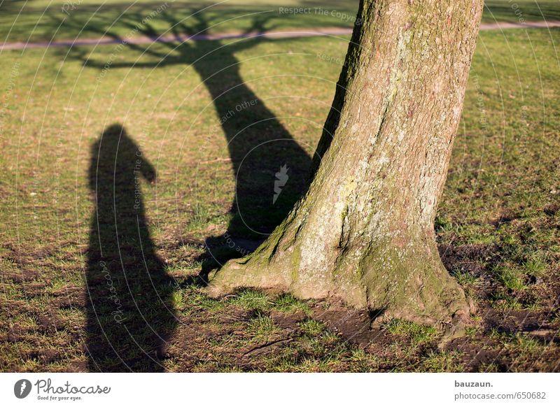 schattenwelt. Mensch Frau Natur Jugendliche grün Baum Junge Frau 18-30 Jahre Erwachsene Umwelt Wiese feminin Wege & Pfade Gras Frühling Holz